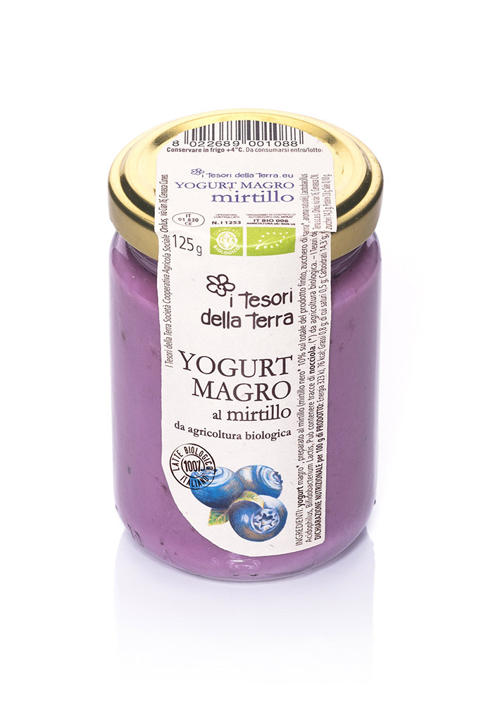 I Tesori della Terra Yogurt magro mirtillo 125g copia